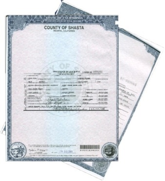 Birth / Marriage / Death Certs   Chapala Law - Spencer\'s Office S.C. ...